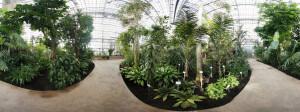 360° Panorama vom Tropenhaus des Botanischen Garten Berlins