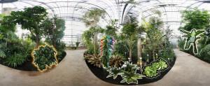 360° Panorama vom Tropenhaus des Botanischen Garten Berlins (mit verschiedenen Hervorhebungen)
